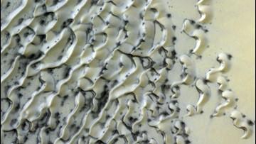 Polar Dunes on Mars Look Like a White Chocolate Candy Bar
