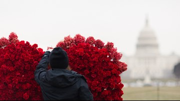 Woman uses 2,000 flowers to create giant heart at U.S. Capitol for Valentine's Day