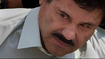 El Chapo was whisked away within hours of sentencing, his lawyer says