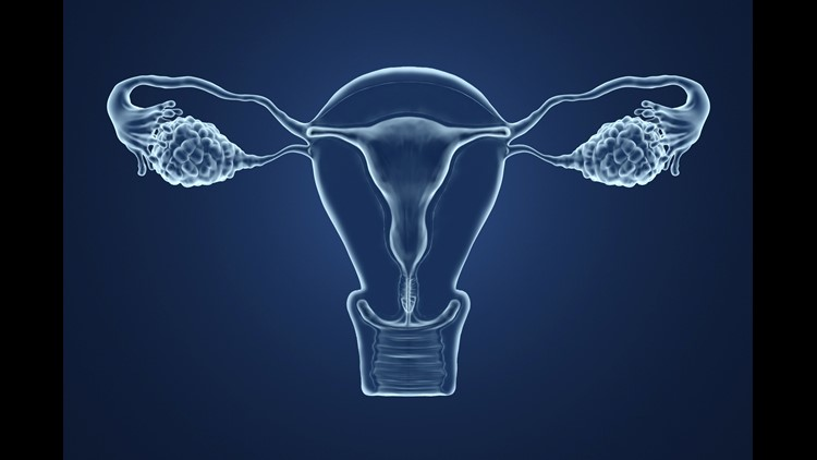 An artificial ovary for fertility preservation without the risk of reintroducing malignancy