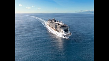 First look: Inside MSC Cruises' new MSC Seaview, one of the