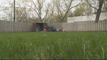 Spring gardening and yard work: What to do now, what should wait