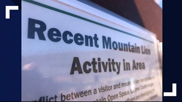 CPW: Colo. runner suffocated mountain lion who attacked him