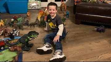 Community donates toy dinosaurs to boy who lost his collection in the Camp Fire