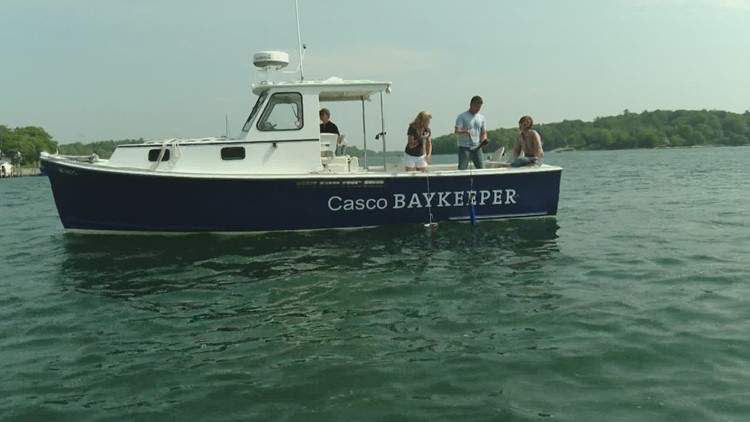 Monitoring the health of Casco Bay is the work of Friends of Casco Bay