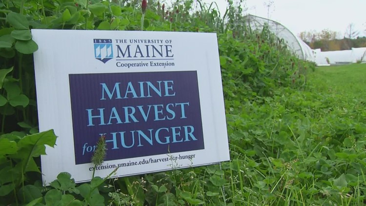 Using extra farm-fresh produce to help feed Mainers in need