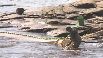 Elver fishing in Maine will begin March 30 after being delayed due to COVID-19