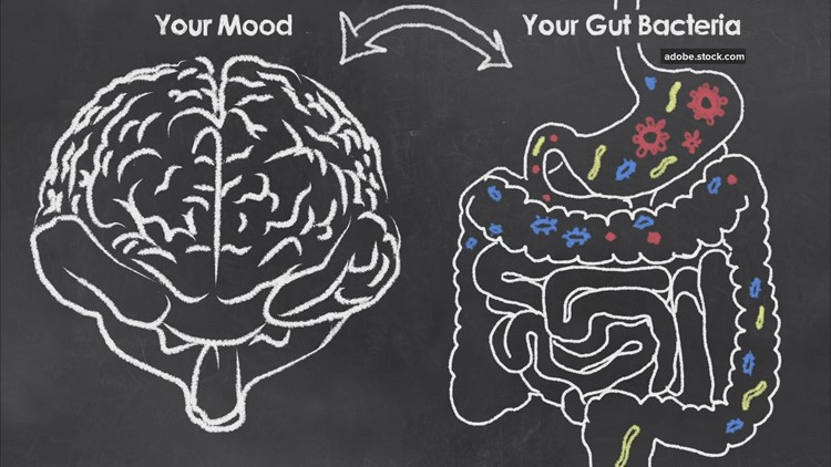 How food determines your mood