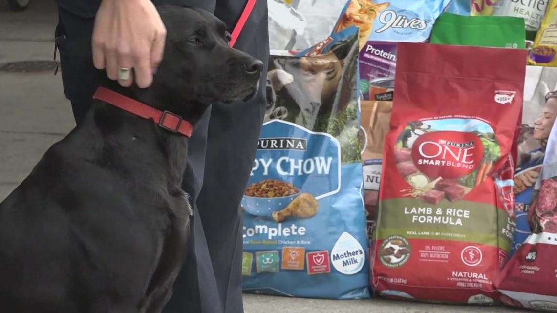 Bangor Police Department hosts pet food drive