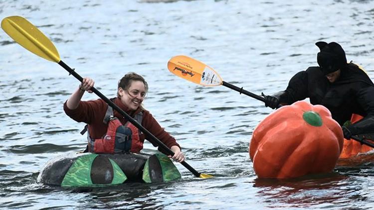 Damariscotta Pumpkinfest won't include famous pumpkinboat regatta this year, as organizers scale back festival