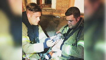 Firefighters adopt puppy they rescued from burning apartment