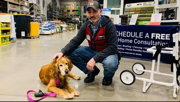 North Carolina Lowe's employee builds custom wheelchair for injured dog found limping on a highway