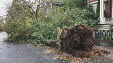 Multi-day outages expected along Maine coast; CMP cites 'significant' damage from nor'easter