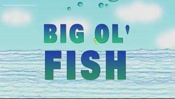 Big Ol' Fish 111718