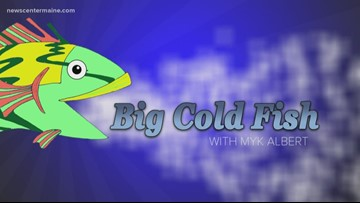 Big Cold Fish 011120