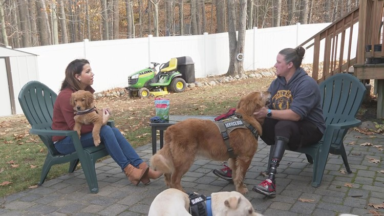 Three-legged therapy dog from Maine continues to share inspiration through new book
