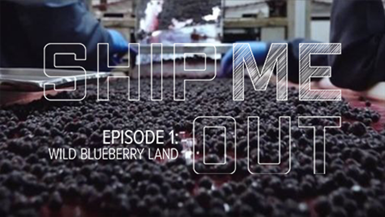 Ship ME Out: E1 'Wild Blueberry Land'