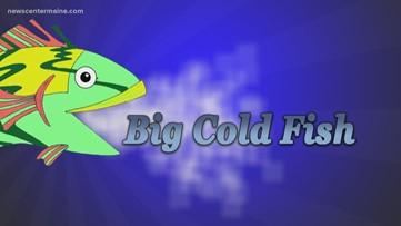 Big Cold Fish 030720