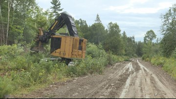 Maine loggers poised to unionize