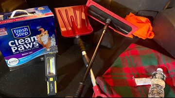 Snow brush. Shovel. Cat litter?! Things you should have in your car this winter