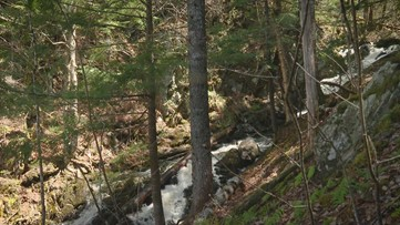 A Breath of Fresh Air: Carry Brook in Moxie Gore is Peaceful and Untouched