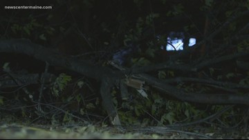 Strong winds cause damage across the state