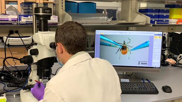 The Maine Tick Lab provides important data following a tick bite