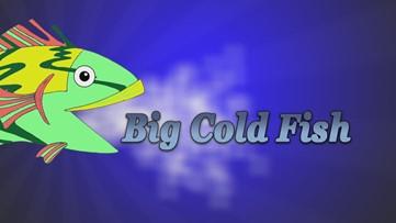 Big Cold Fish 041220