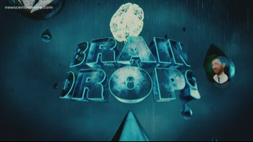 Brain Drops- the stack effect