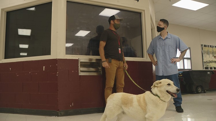'Second Chances' bring a marine and his dog into the Maine State Prison