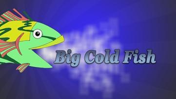 Big Cold Fish 051020