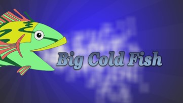 Big Cold Fish 042620
