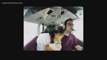"""Flying Fur"" documentary highlights dog rescue in the sky"
