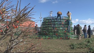 Rockland builds largest lobster trap Christmas tree