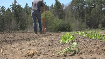 Maine prioritizing help for new farmers at annual trade show