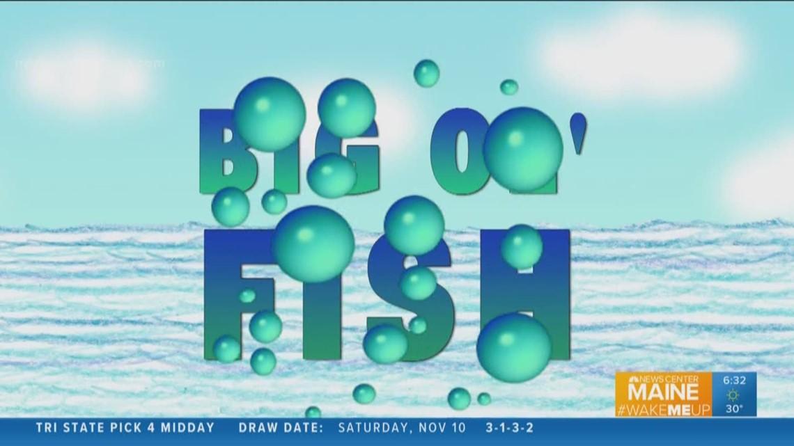 Big Ol' Fish 111118