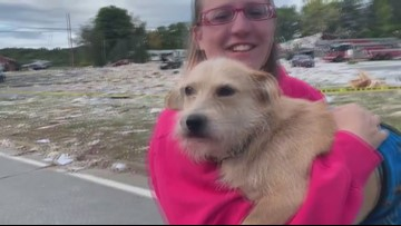 Jaime Green finds one of her lost pets after Farmington explosion