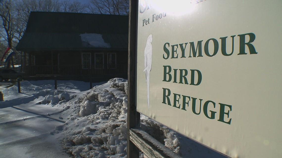 Saving Seymour's Bird Refuge