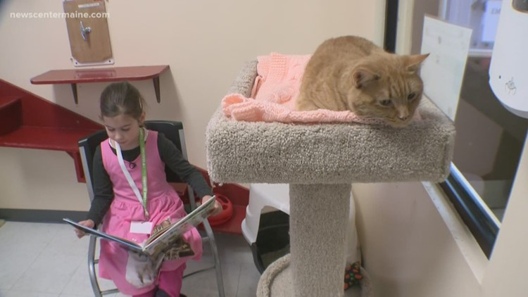Rescued animals need comfort, and kids need to learn to read