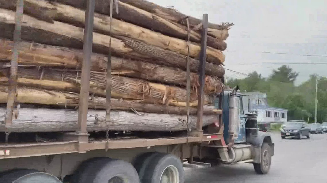 A Maine-based company is bringing wood fiber insulation to the state