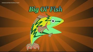 Big Ol' Fish 122819