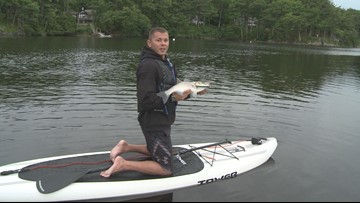Paddle Board Striper Fishing on the Saco | newscentermaine com