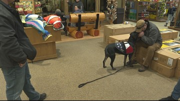 Dogs provide healing to veterans living with PTSD