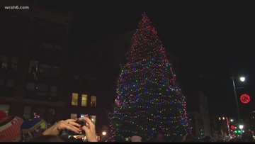 Do you have the 'perfect tree' to illuminate Maine's largest city?