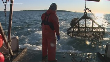 COOL JOBS: Generations of Maine fishermen keep shuckin' in the cold