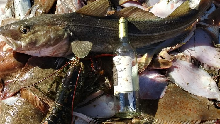 Message in a bottle among fish
