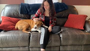 Service dog keeping teen with rare disease safe