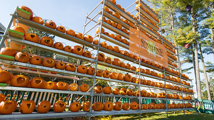 Camp Sunshine Pumpkin Festival