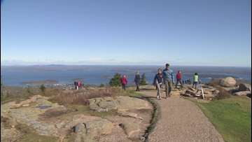 Reports of unleashed dogs biting visitors cause concern in Acadia