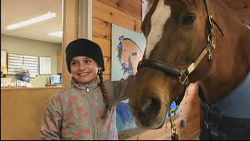 'Truly heartwarming': Eight-year-old donates to equine center